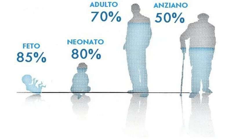 percentuale acqua nel corpo umano
